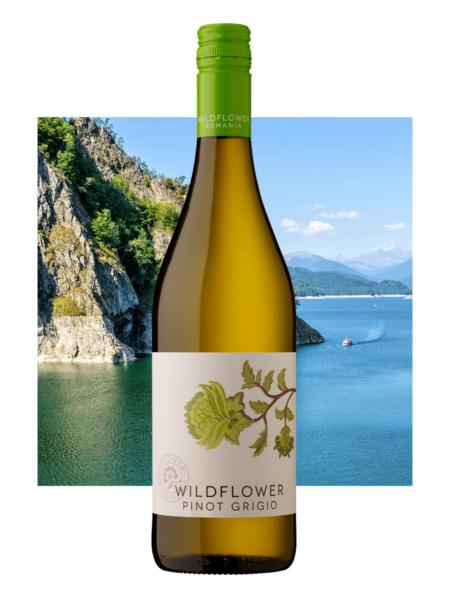 Wildflower Pinot Grigio